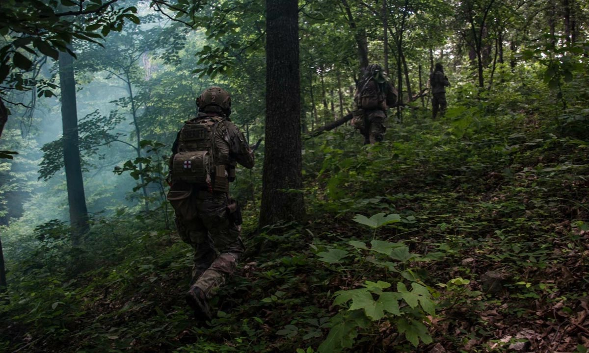 Heroic Federal Defense Forces Coalition Balk